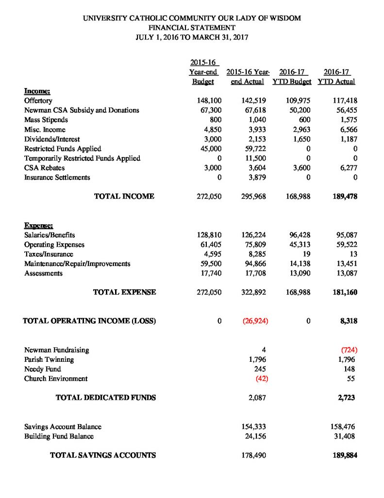 thumbnail of Financial Summary 033117