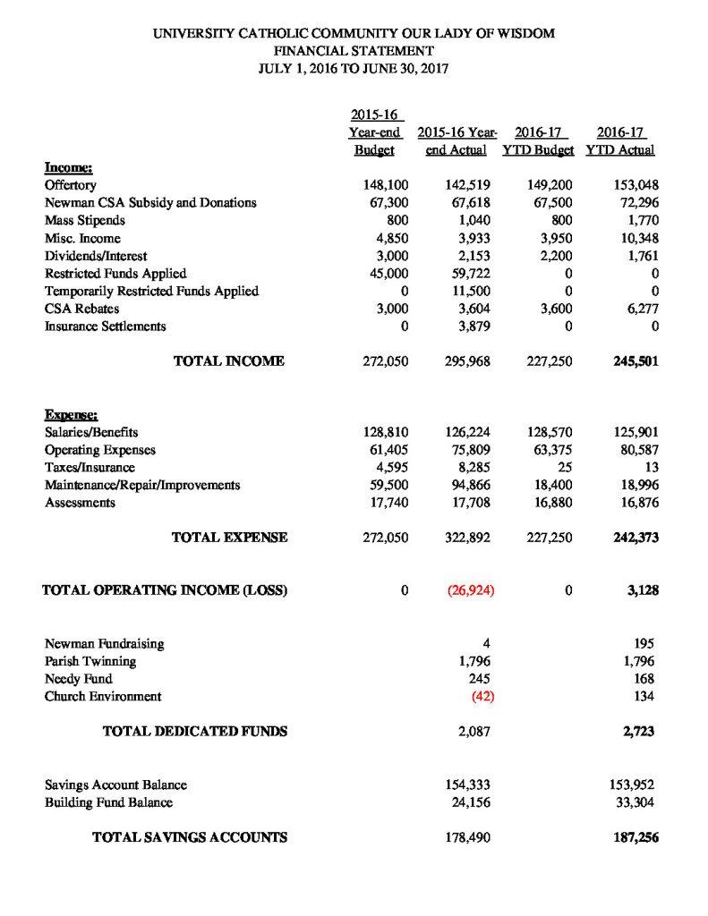 thumbnail of Financial Summary 063017
